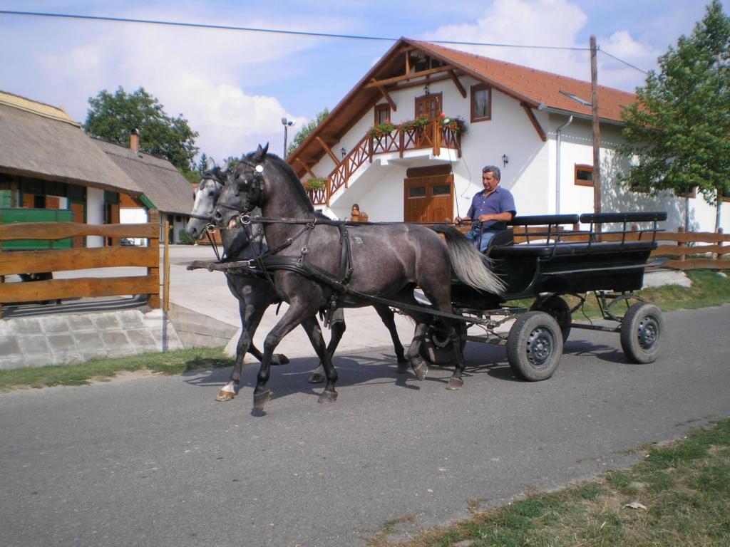lovaskocsi 2