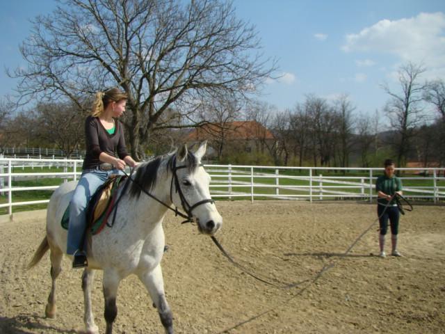lovasoktatás1